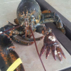 Thumbnail image for Never Before Seen Fisherman Catches Rare 6 Clawed Lobster